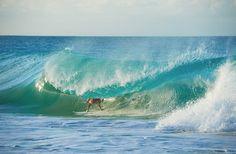 chris burkhard caribbean | Ben Bourgeois, Caribbean - SURFER Magazine | SURFER Magazine