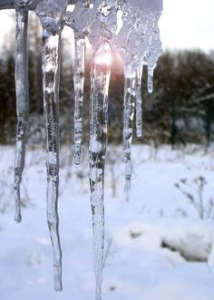 I'm putting on my CM tree... glass icicles.