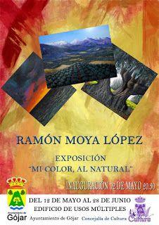 """Galería virtual.R.Moya: """"Mi COLOR, AL NATURAL"""". Título de la exposición de..."""