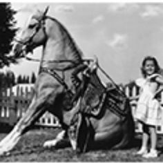 "Cheryl ""Cowboy Princess' and Trigger"
