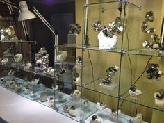 Look at these awesome specimens of Pyrite from the Tuscon Gem and mineral show 14