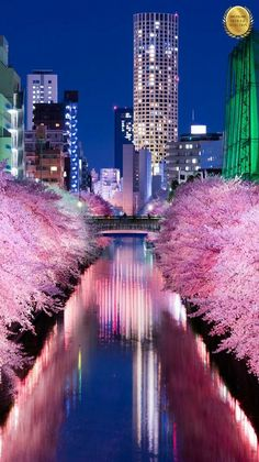 Cityscape - The Meguro river in Tokyo, Japan. - Cityscape – The Meguro river in Tokyo, Japan. – ph… – Source by - Places Around The World, Around The Worlds, Places To Travel, Places To Go, Travel Destinations, Japon Illustration, Visit Japan, Tokyo Japan, Okinawa Japan