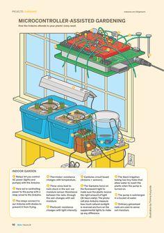 Serra per coltivare peperoncini