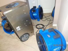 The Five Steps of Water Damage Restoration | New Port Richey Mold Removal