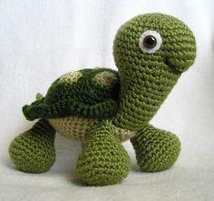 Baby Turtle.  Too cute...