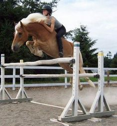 bareback and bridleless with superb equitation - bravo!