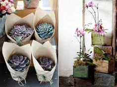 florist cafe shop - Google Search
