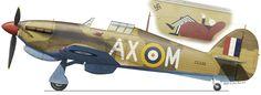 """Hurricane Mk IIb, AX-M, Z5438, N° 1 Squadron, L.G.92, Egypt, July 1942. Pilot Lt. """"Jerks"""" Maclean."""