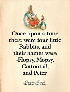 Flopsy Mopsy Cottontail and Peter Beatrix Potter Illustrations, Peter Rabbit Party, Peter Rabbit Story, Beatrix Potter Books, Susan Wheeler, Beatrice Potter, Peter Rabbit And Friends, Storybook Cottage, Children's Book Illustration