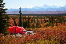 hiking in denali national park favorite places spaces