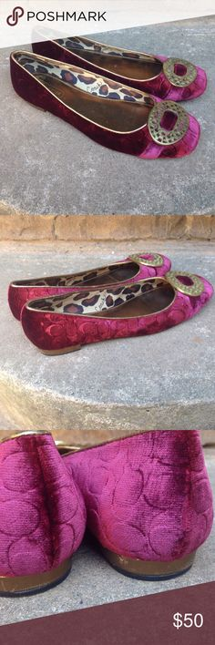 Coach BABS Velvet Flats Coach BABS burgundy velvet signature C ballet flats. Brushed gold medallions on each toe. Show some wear on the bottom and sole. Has a tiny scuff on the heel ( see photo 3). Otherwise these are in good shape. No odors. Cute shoes 💕💕 Coach Shoes Flats & Loafers