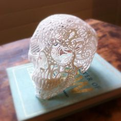 lace skull this could be easy to make as long as you had a hard plastic skull to lay thin lace over and use spray glue or paint with a glue that was colorless. I will have to Google more about it.