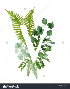 Floral letter V. Beautiful green leaves and branches painted with watercolor. Watercolor eucalyptus and fern foliage letter. Green watercolor monogram