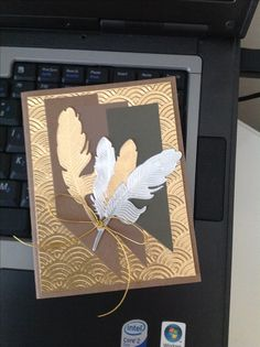 use paper with shinny pattern, feather stamp & die set.
