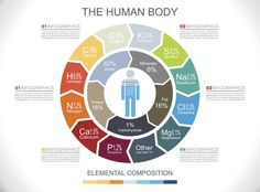 These Are the Elements in the Human Body: Element Chemistry of Your Body