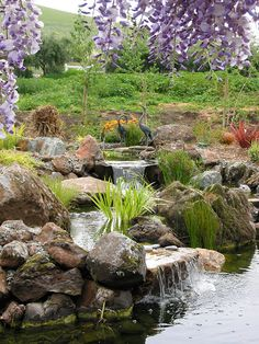 Pond Waterfall Designs Pictures | , San Jose, San Francisco | Pond Magic - Custom Ponds, Waterfalls ...