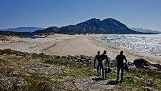 Playa de Arealonga, en Muros, situada en un entorno vírgen, en un cordón de dunas en la laguna de Xarfas, y al pie del Monte Louro. FOTÓGRAFO: MANUEL MARRAS