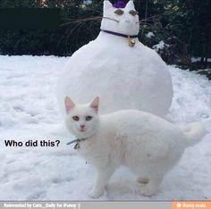 I'm not that fat! / iFunny :)