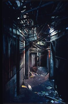 Kowloon Walled City photos - Business Insider