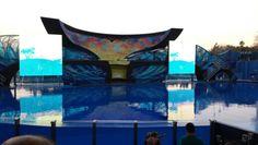 Shamus One Ocean Show