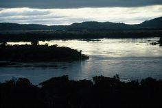 Das Licht der Sonne bringt die grüne Uferwand zum leuchten...