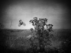 Motorcross One Tree, Motocross, Diaries, Surfing, Motorcycle, Sports, Photography, Inspiration, Fotografia