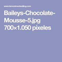 Baileys-Chocolate-Mousse-5.jpg 700×1.050 píxeles