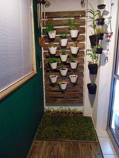 Pergunta: Oi, Raquel. Nunca fui aficcionada por plantas mas, de uns anos para cá, desenvolvi um grande desejo de ter horta vertical e jardim na sacada do m