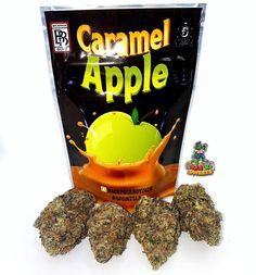 #420MailOrder #BestOnlineDispensary #BuyCannabisOilOnlineUK #BuyCannabisOnline #BuyCannabisWaxOnline #BuyCheapMarijuanaOnline #BuyLegalWeedOnlineCheap #BuyMarijuanaConcentratesOnline #BuyMarijuanaEdiblesOnline #BuyMarijuanaOnlineAustralia #BuyMarijuanaOnlineUK #BuyMarijuanaShatterOnline #BuyMarijuanaWaxOnline #BuyRealWeedOnline #BuyRealWeedOnlineCheap #BuyRecreationalWeedOnline #BuySkunkOnlineUk #BuyWeedCheapOnline #BuyWeedEdiblesOnline #BuyWeedOnline #BuyWeedOnlineCheap #BuyWeed Medical Benefits Of Cannabis, Medical Marijuana, Buy Cannabis Online, Buy Weed Online, Airheads Candy, Weed Strains, Buy Backpack, Edibles Online, Marijuana Plants