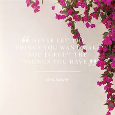 """""""Never let the things you want make you forget the things you have."""" Tina Turner"""