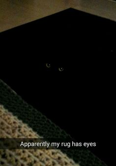 The rugs have eyes....