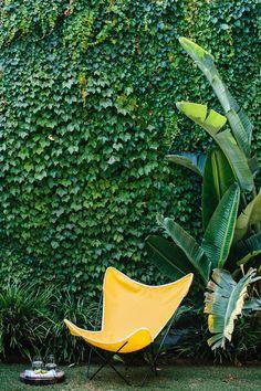 (via Modern Family Garden Care, Modern Garden Design, Landscape Design, Landscape Plans, Ivy Wall, Estilo Tropical, Terrace Garden, Walled Garden, Herb Garden