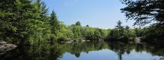 Spring at Hidden Lake on Camp #Yawgoog's White Trail.  A 2015 Facebook cover photo by David R. Brierley.