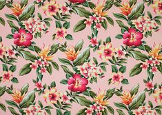 14wehi - Is a tropical hibiscus, bird of paradise & plumeria flowers. This  vintage inspired cotton apparel fabric fabric is available in this coral background only now.  More fabrics at: BarkclothHawaii.com