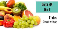 Dieta gm perder peso dia 1