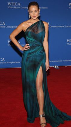 Hannah Davis at the White House Correspondence dinner 2015. Flawlessly sculpted.