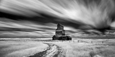 Fusilier Infrared | by Sandra Herber Examples Of Art, Days Out, Art Direction, My Images, Statue Of Liberty, Places, Beautiful, Statue Of Liberty Facts, Statue Of Libery
