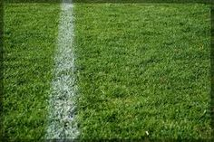 Cytoplasm - The grass is similar to the cytoplasm because it's inside the football field Definition - living gel that lies between the cell membrane and the nuclear membrane