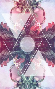 triangles, flower arrangement, reflection/kaleidoscope
