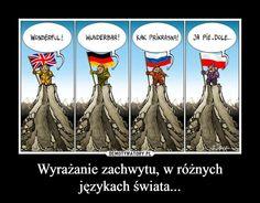 Wtf Funny, Funny Jokes, Hilarious, Everything And Nothing, Memes Humor, Itachi, Funny Comics, Best Memes, Poland Hetalia