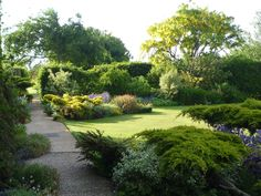 We love where the sunlight lands in our garden. NGS Gardens open for charity - Garden