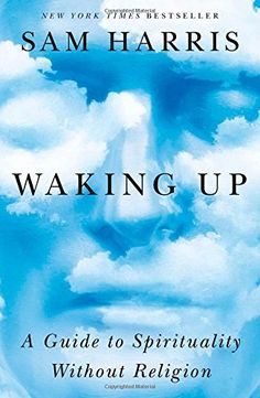 Waking Up: A Guide to Spirituality Without Religion by Sam Harris http://www.amazon.ca/dp/1451636016/ref=cm_sw_r_pi_dp_yUP0ub0J7A3TR
