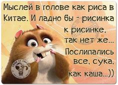 Funny Expressions, Clever Quotes, Just Smile, Good Thoughts, Man Humor, Funny Texts, Laughter, Comedy, Poems