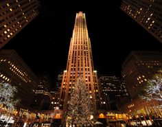 The holiday season can finally begin! The Rockefeller Center Christmas Tree stands in its full lit-up grandeur following the annual tree lighting ceremony in New York City.