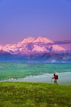 view of Mt McKinley in background Denali National Park Interior Alaska summer