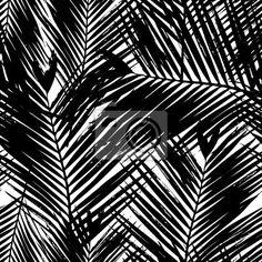 Dark Palm Tree Leaves Wallpaper