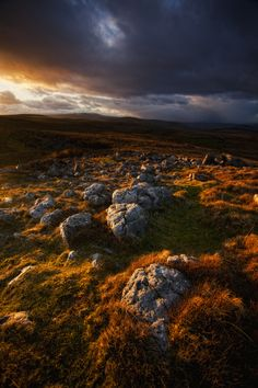 the moors, Brecon Beacons South Wales UK