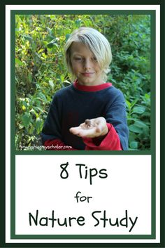 The bonus featured post from week 117 of the SHINE Blog Hop is: 8 Tips for Nature Study by Nourishing My Scholar!