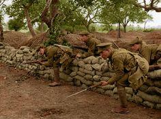 World War 1 in Colour (Photos) | The Open University