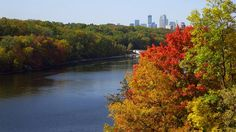 You haven�t lived until you�ve seen the Twin Cities in the fall. Take a scenic leaf-peeping drive along Minnehaha Parkway in Minneapolis or Summit Avenue in St. Paul, or head down River Road to see the leaves on both sides of the Mississippi River. Go hiking and biking in nearby Fort Snelling State Park and Afton State Park. Sports venues are popular spots in the fall, too. Watch the season wind down for the Minnesota Twins at Target Field